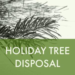 Holiday Tree Disposal