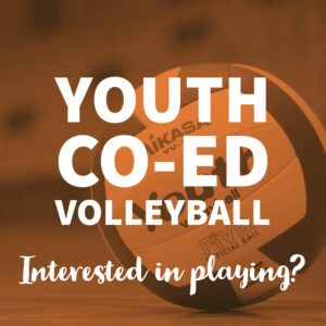 POST PIC Youth CoEd Volleyball Interested in Playing (FB & IG)