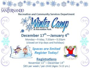 Winter Camp flyer