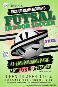 revised futsal flyer