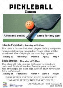 Pickleball Classes