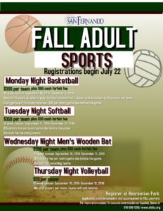 Adult Sports Fall Leagues