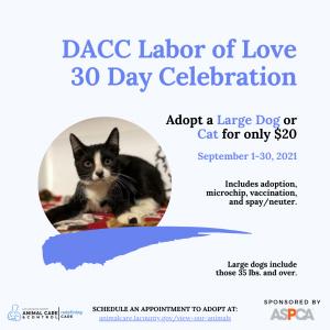 Labor of Love Graphic (2021) 8.24.2021